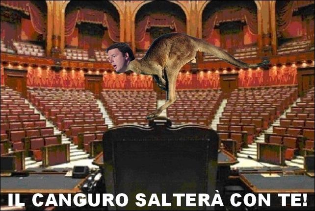 canguro senato