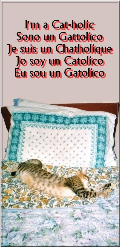 Cat-holic